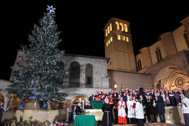 Inaugurato l'abete della Basilica di Assisi: l'albero di San Francesco è targato PEFC