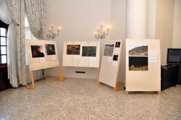 """""""Il bosco, l'uomo, la biodiversità"""": un servizio del TG Trentino per la mostra patrocinata PEFC"""