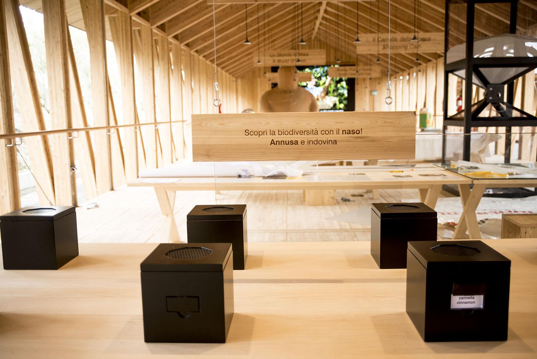 EXPO 2015 vetrina per la gestione forestale sostenibile: il 60% delle strutture è legno, molto è certificato PEFC e da filiera corta italiana