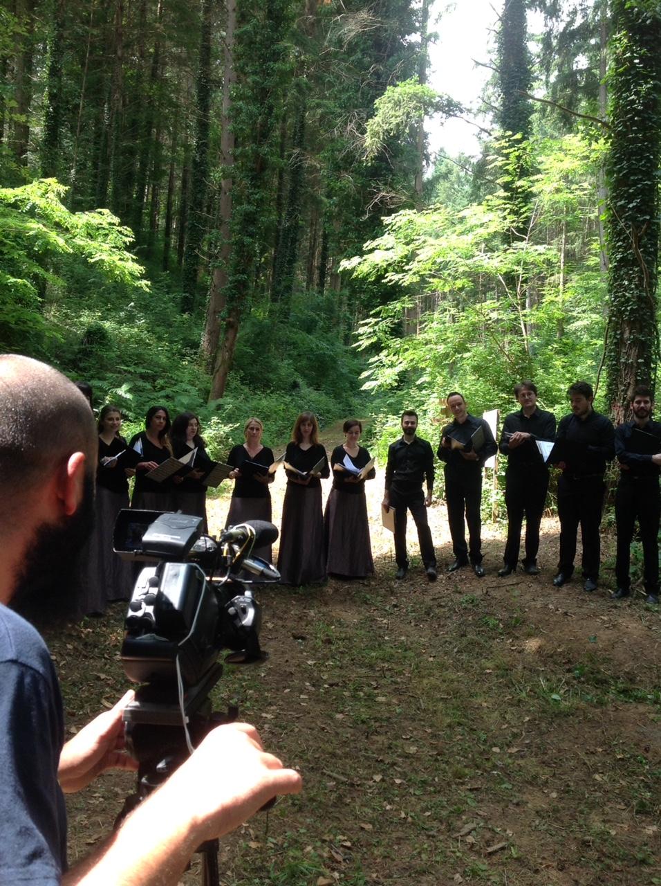 Videonotizia: Musicalmente in bosco
