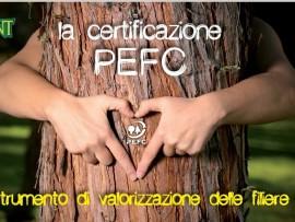 La certificazione PEFC come strumento di valorizzazione delle filiere forestali