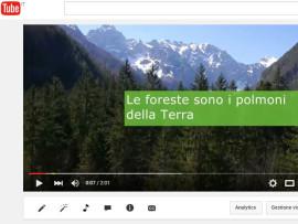 Videonotizia: un nuovo video per raccontare il mondo PEFC