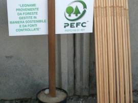 Bastoni da passeggio per camminare insieme al PEFC