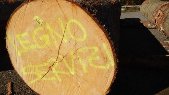 Il legno certificato PEFC del Fvg alla conquista dei mercati