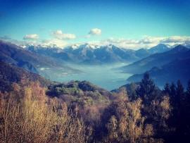 Foresta Corni di Canzo (ERSAF): gestione e filiera corta PEFC