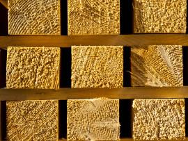 FAO: da edilizia ed energia il traino del settore foresta-legno
