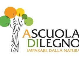 A Cuneo, tutti a scuola di legno certificato!