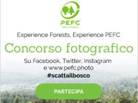 Terminato il primo concorso fotografico PEFC: un grande successo!