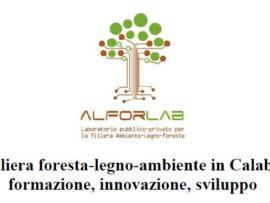La filiera foresta-legno-ambiente in Calabria:  formazione, innovazione, sviluppo